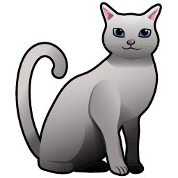 ネコ:ロシアンブルー